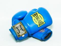 Боксерські рукавички 10ун з печаткою ФБУ сині
