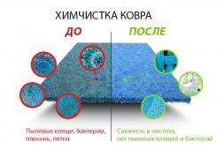 Чищення (прання) килимів та м'яких меблів з вивезенням і на дому
