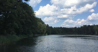 Друскінінкай: лісову ділянку біля озера, 3 Га під ІЖС/готель