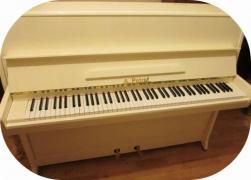 « Елитпиано» пропонує широкий вибір роялів і піаніно