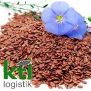 КТЛ-ЛОГІСТИК закуповує насіння льону на умовах СРТ Березівка