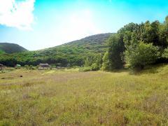 Купіть великий земельну ділянку в гірському Криму під будівництв