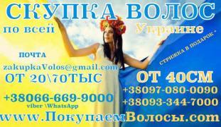 Купую волосся в кожному місті України Салон Краси Куплю волосся