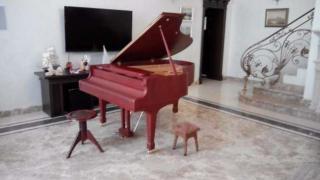 Оренда рояля в Києві, оренда рояля на виставку, презентацію, кон
