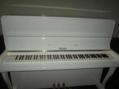 піаніно будь-якого кольору – білого, коричневого, чорного