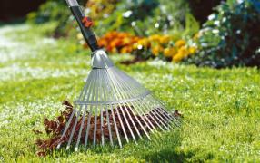 Послуги садівника. Комплексний догляд за садом