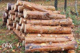 Продам дрова сосни, акації