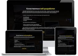Професійна розробка веб-сайтів та лендингов
