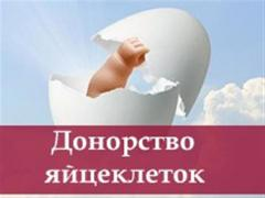 Співпраця для донорів і сурогатних мам. Чернівці