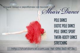 Танець на пілоні, танець на жердині, Pole Dance. Exotic pole. Twerk