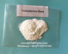 Testosterone Base/Testosterone Suspension steroid powder