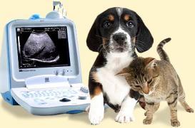 Ветеринарні узд сканери