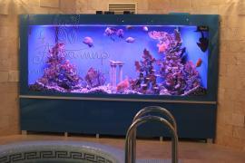 Виготовлення акваріумів під ключ в Києві і передмісті