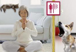 Звукоізоляція Mute забезпечимо тебе тишею